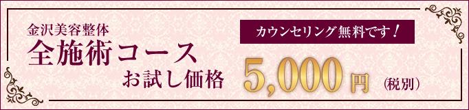 美容整体全施術コースお試し価格5,000円(税別)カウンセリングは無料です!